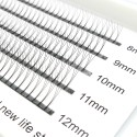 C D Curl 8-12mm Mix Length 0.10mm 0.07mm Thickness 3D Premade Volume Fans Eyelash Extensions