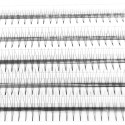 C D Curl 0.07mm 0.1mm Thickness 8-12mm length 3D Volume Eyelashes Extensions